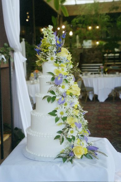 Green Weddings And Eco Events Bay Area Ca